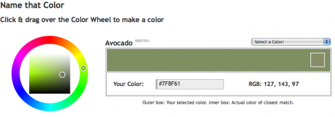 namethatcolor_avocado